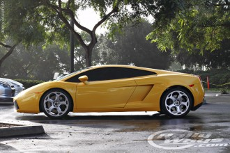 Perfect Lamborghini Gallardo