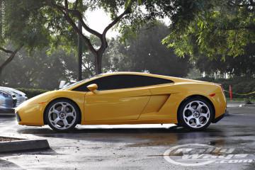 Perfect Lamborghini Gallardo