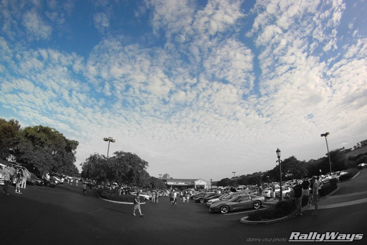 Cbad Cars Full Lot