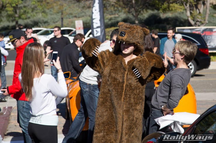 Targa Trophy Holiday Bear