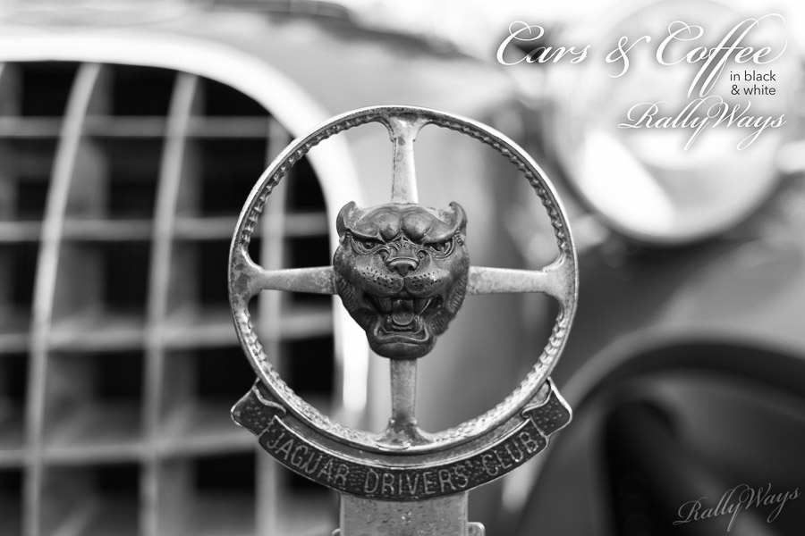 Cars and Coffee in Black and White Slideshow Cover