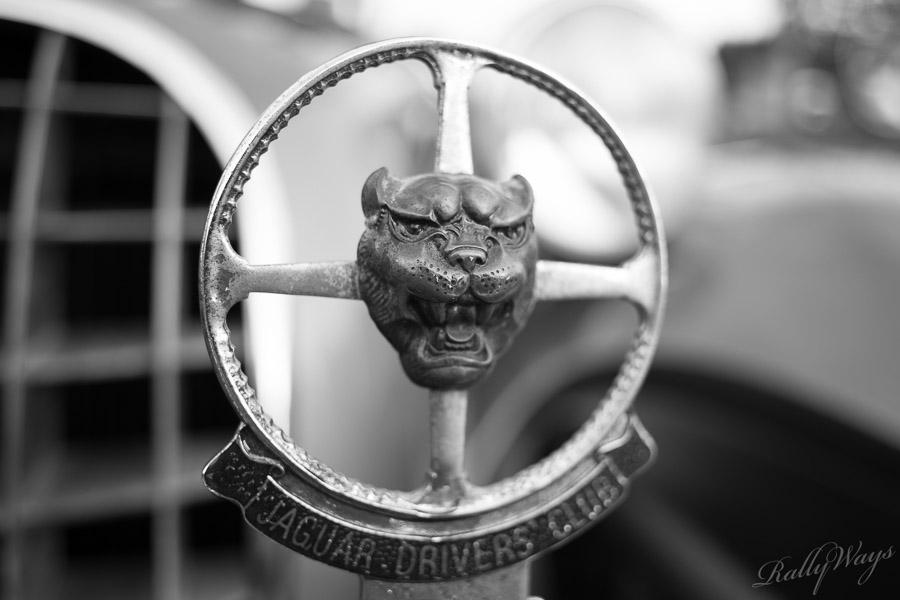 Jaguar Driver's Club Emblem