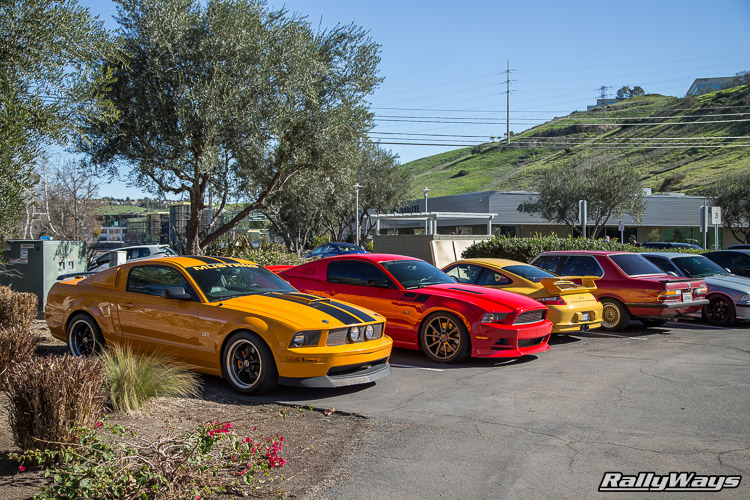 HGMS Open House Mustangs